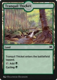 Tranquil Thicket - Historic Anthology 2