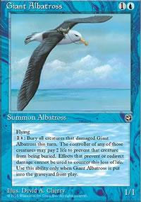 Giant Albatross 2 - Homelands