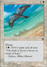 Mesa Falcon 1 - Homelands