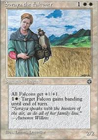 Soraya the Falconer - Homelands