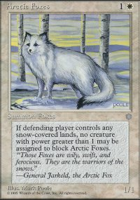 Arctic Foxes - Ice Age