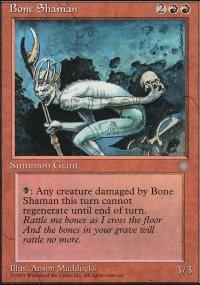 Bone Shaman - Ice Age
