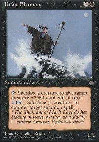 Brine Shaman - Ice Age