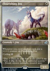 Flourishing Fox -