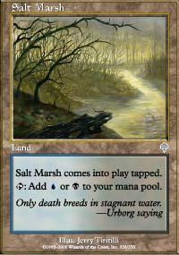 Salt Marsh - Invasion