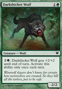 Darkthicket Wolf - Innistrad