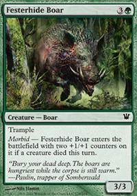 Festerhide Boar - Innistrad