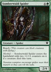 Somberwald Spider - Innistrad