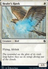 Healer's Hawk -