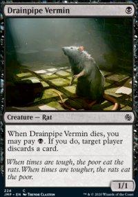 Drainpipe Vermin -