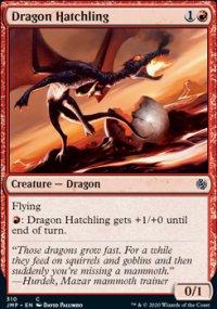 Dragon Hatchling -