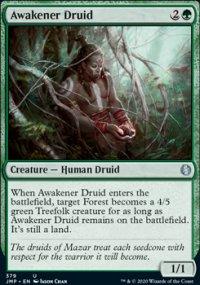 Awakener Druid -