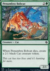 Penumbra Bobcat -