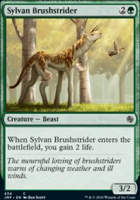 Sylvan Brushstrider -