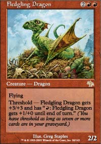 Fledgling Dragon - Judgment