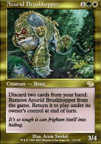 Anurid Brushhopper - Judgment