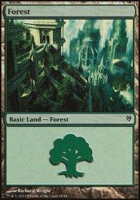 Forest 5 - Jace vs. Vraska