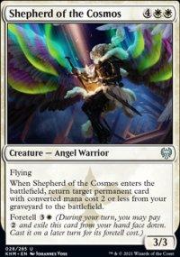 Shepherd of the Cosmos -