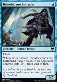 Brinebarrow Intruder -