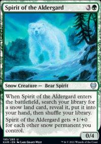 Spirit of the Aldergard -