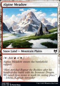 Alpine Meadow -