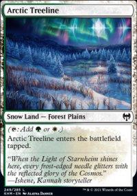 Arctic Treeline -