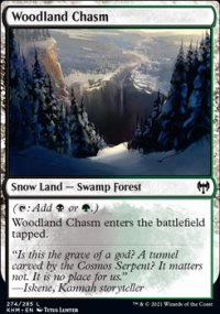 Woodland Chasm -