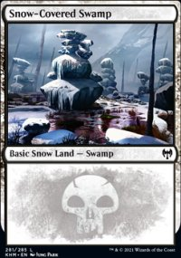 Snow-Covered Swamp -