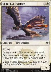 Sage-Eye Harrier - Khans of Tarkir