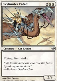 Skyhunter Patrol - Knights vs. Dragons