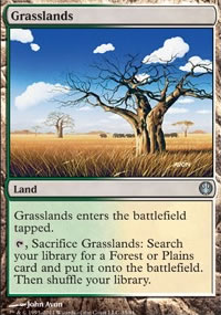 Grasslands - Knights vs. Dragons