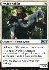 Novice Knight -