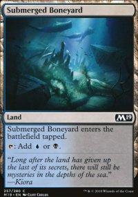 Submerged Boneyard -