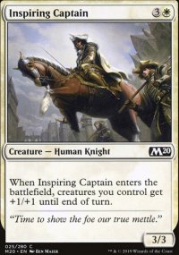 Inspiring Captain -