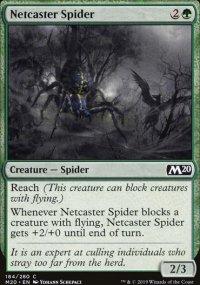 Netcaster Spider -