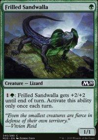 Frilled Sandwalla -
