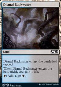 Dismal Backwater -