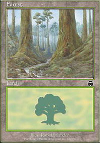 Forest 3 - Mercadian Masques