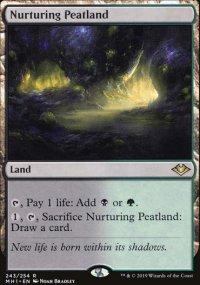 Nurturing Peatland - Modern Horizons