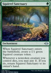 Squirrel Sanctuary -