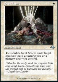 Soul Snare -