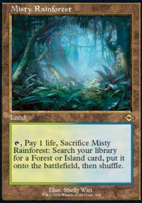 Misty Rainforest -