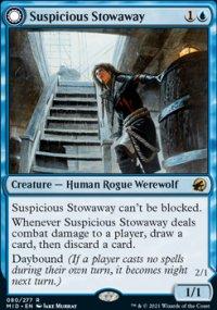 Suspicious Stowaway -