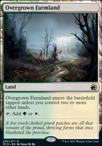 Overgrown Farmland 1 - Innistrad: Midnight Hunt