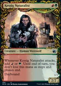 Kessig Naturalist -