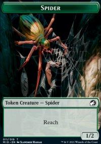Spider -