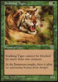 Stalking Tiger - Mirage