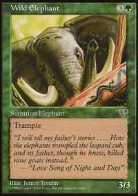 Wild Elephant - Mirage