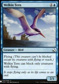 Welkin Tern - Mystery Booster