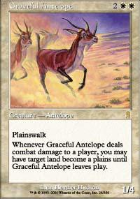 Graceful Antelope - Odyssey